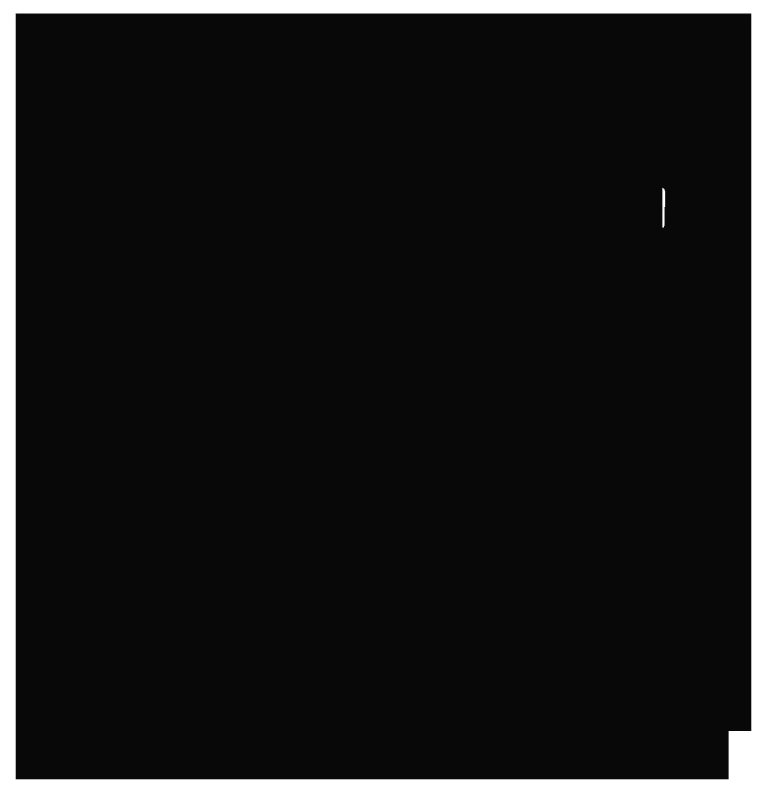 Skullforge Studios